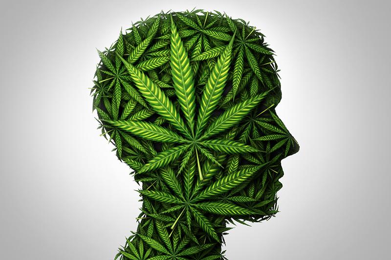 Visualisierung Cannabis